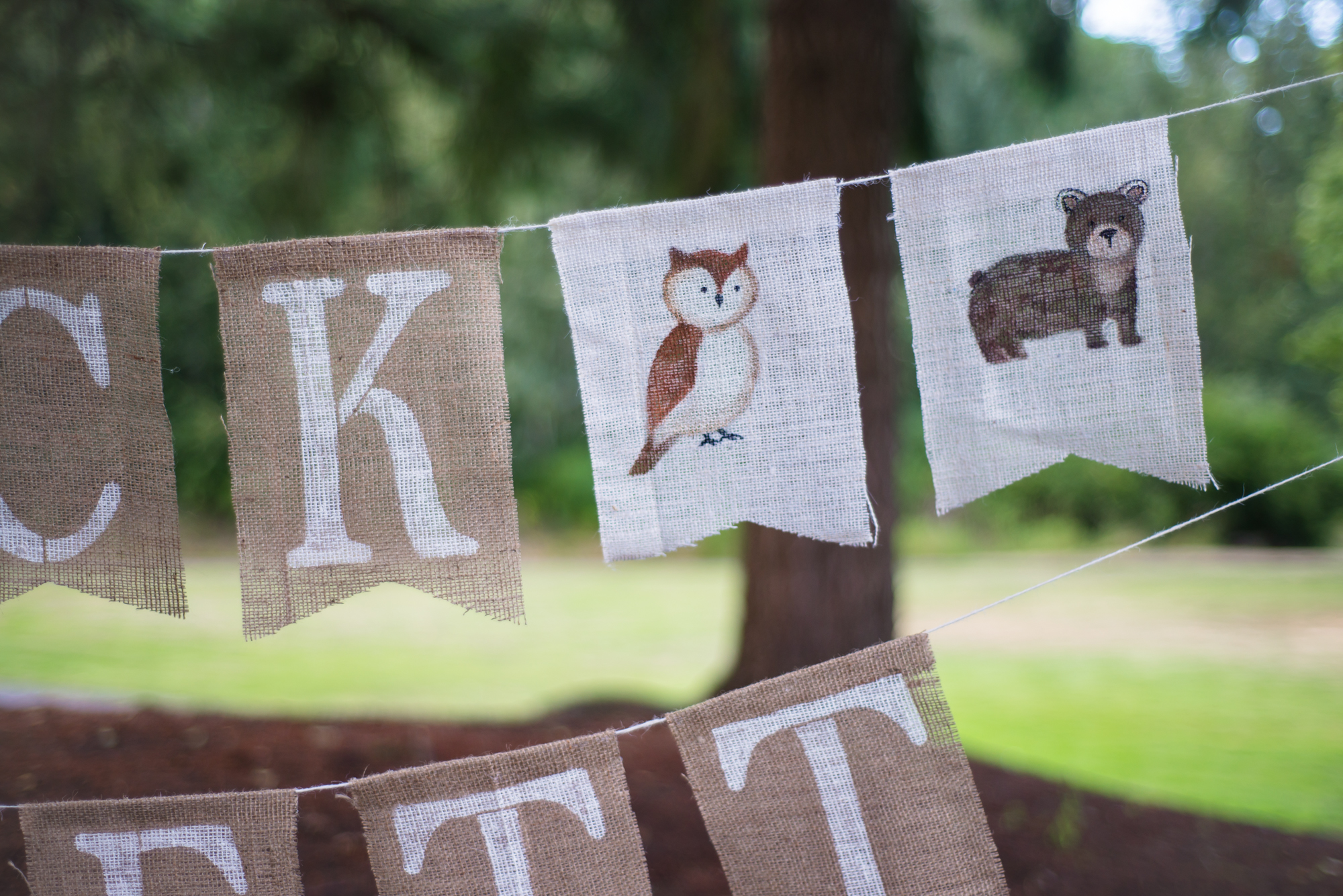 Woodland Themed Gender Reveal (+Adorable Rustic Forest Animal Bunting!)