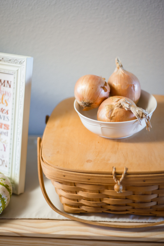 Rustic Autumn Decor and Our Current Plans