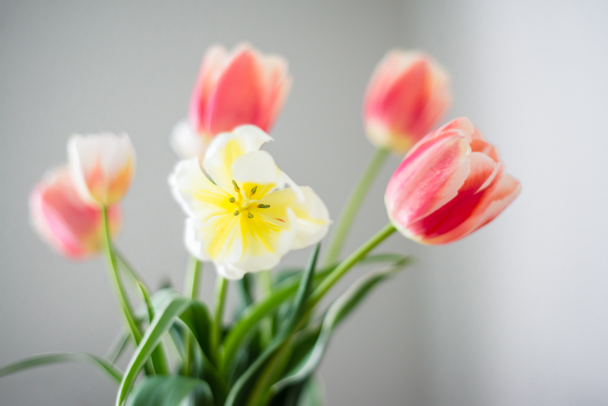 Make Budgeting Fun! | 10 Tips to Change the Way You Budget