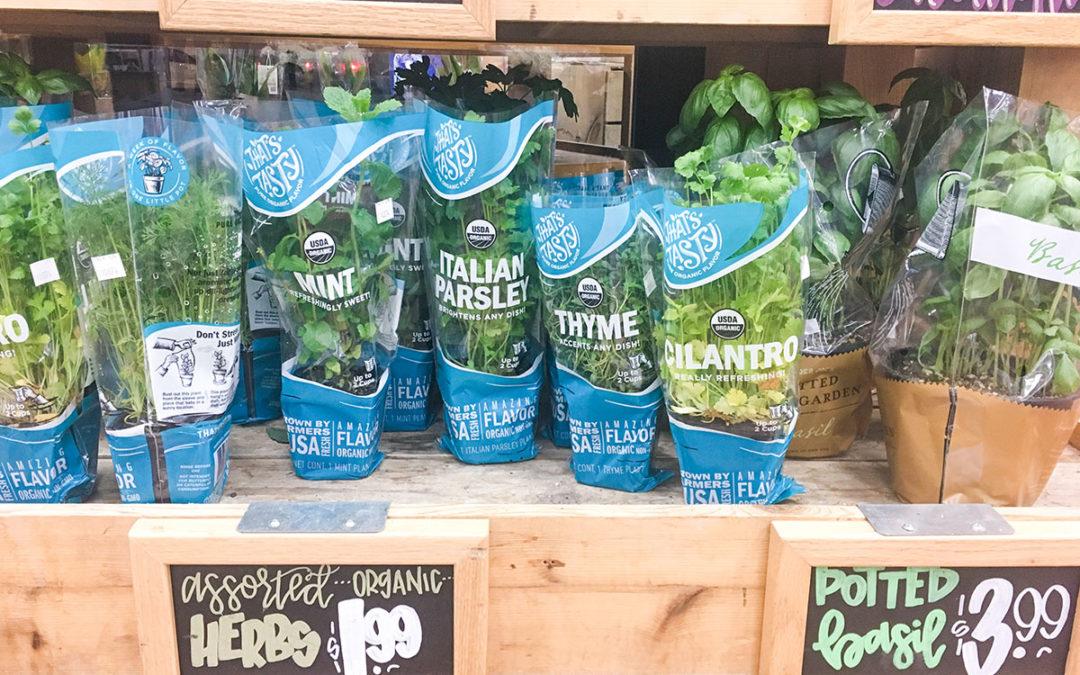 10 Best Organic Trader Joe's Deals